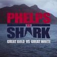 O tem, kaj je razjezilo gledalce dvoboja Phelps vs. morski pes!