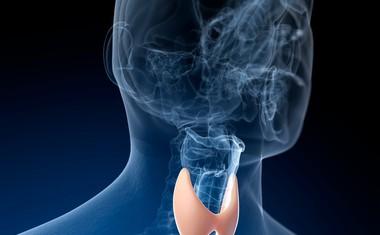 Je ščitnično bolezen Hashimotov tiroiditis res mogoče ozdraviti z alternativo?