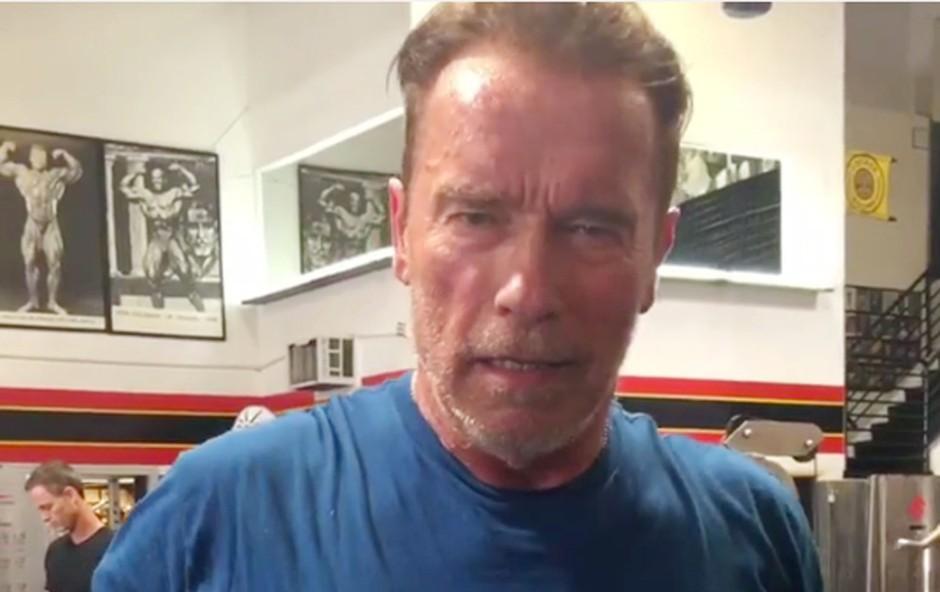 Arnold Schwarzenegger se veseli: Postal bo dedek! (foto: profimedia)