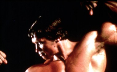 Arnold Schwarzenegger, filmski Terminator in Konan, praznuje 70 let
