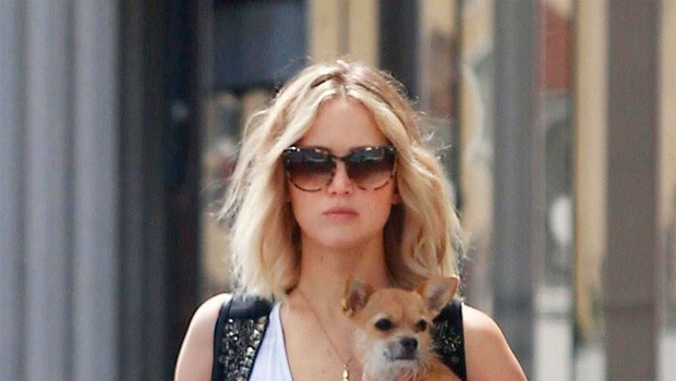 Jennifer Lawrence: Vloga v filmu Mama (foto: Profimedia)