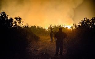Dalmacija: Še se borijo s številnimi požari