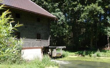 FOTO: Na snemanju promota za novo Kmetijo!