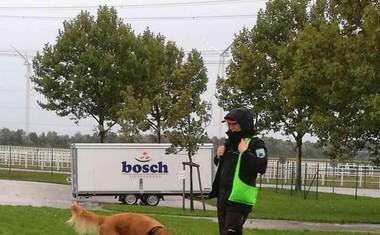 Že tretje leto zapored ostajamo v svetovnem vrhu pri delu z reševalnimi psi!