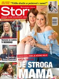 Story 41/2017