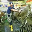 Darja Tomažin po vrnitvi na svojo kmetijo srečna med živalmi