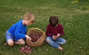 V tednu jesenskih (krompirjevih) počitnic šolarjem ne bo dolgčas!