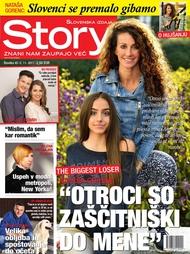 Story 45/2017