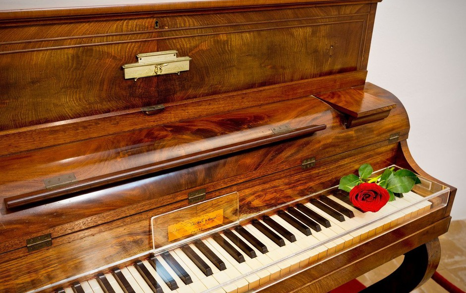Frederic Chopin je umrl zgodnje smrti zaradi perikarditisa! (foto: profimedia)
