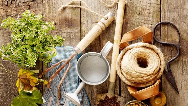 Vrtnih opravil nikoli ne zmanjka - tudi pozimi ne (foto: Shutterstock)