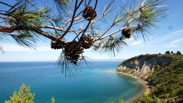Odplujte zdravim in sončnim doživetjem naproti - v Terme na morju! (foto: LifeClass Portorož)