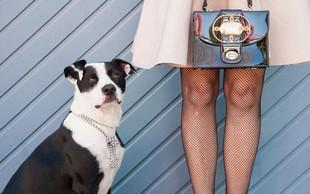 Psi bolj ubogajo ženske, pravijo raziskave!