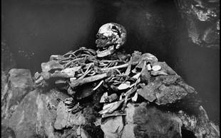 Prvi Britanci naj bi bili temnopolti in modrooki, na podlagi DNK trdijo znanstveniki!