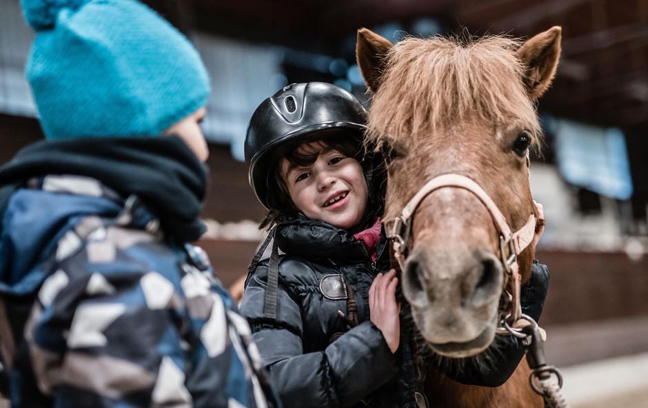 Počitniški dan objemov z lipicanci in poniji (foto: Kobilarna Lipica)