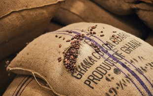 Čokolada čarobnega okusa z veliko odgovornosti do okolja in pridelovalcev