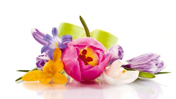 Barve in njihov pomen v svetu magije (foto: Shutterstock)