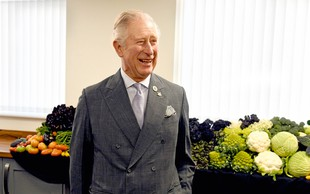 Charles in William sta po odhodu Harryja in Meghan bolj povezana