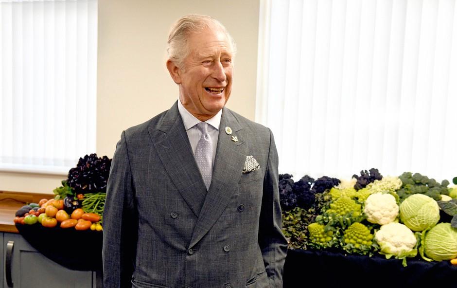 Charles in William sta po odhodu Harryja in Meghan bolj povezana (foto: Profimedia)