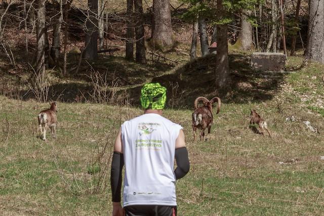 #StandUpMaratonec na Zlatorogovi poti: Gremo v hribe za botrstvo! (foto: Tešky Press)