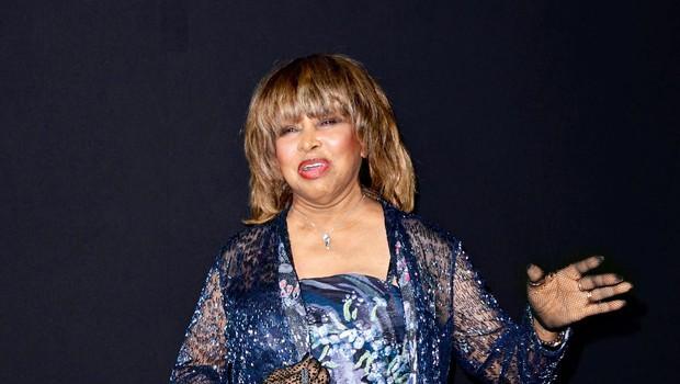 Tina Turner: Sin je naredil samomor (foto: Profimedia)