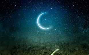 Lunin koledar: Vrtnarjenje po luni