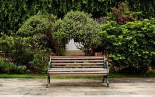 Nezahtevni vrtovi: Dobro načrtovanje prihrani veliko dela