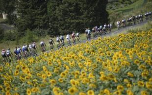 Incident z balami sena in solzivcem prekinil 16. etapo Toura