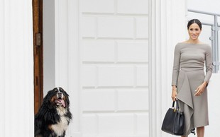 Princ Harry in Meghan Markle posvojila prikupnega kosmatinca