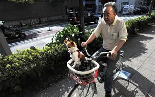 Japonski rekordi: Imajo že skoraj 70.000 stoletnikov!