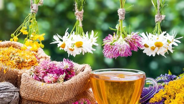 Za vsako bolezen rož'ca raste: 60 receptur prof. dr. Štruklja! (foto: Shutterstock)