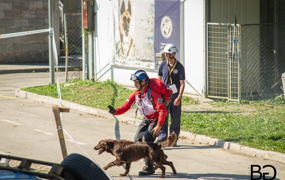 Člani Enote reševalnih psov Slovenije ponovno v svetovnem vrhu! (foto: Boštjan Gartnar)