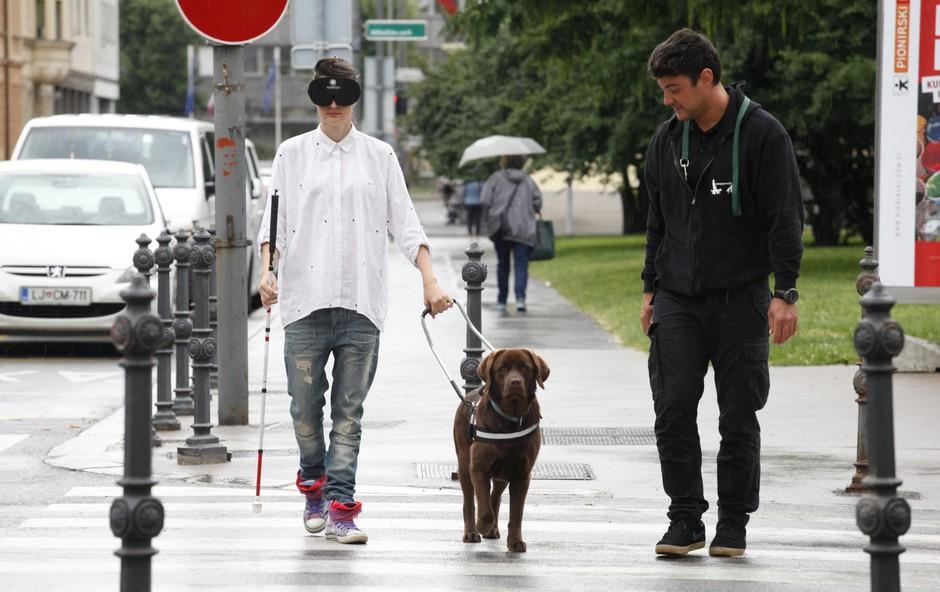 Pes pomočnik tudi za gibalno ovirane (foto: ALEKSANDRA SAšA PRELESNIK)