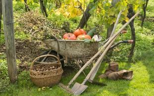 Pravočasna zaščita vrta pred mrazom