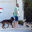 Ben Affleck po boju z odvisnostjo: Bos se sprehaja s svojima kužkoma