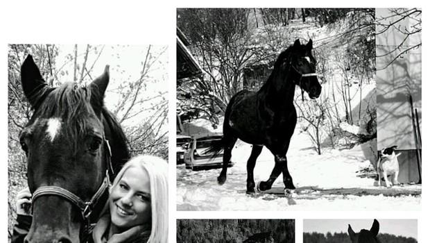 Lara Goršek Kos (Kmetija) se je za vedno poslovila od svojega Arčija (foto: Facebook)