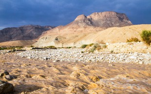 Poplave v Jordaniji terjale žrtve, iz Petre evakuirali 4000 turistov