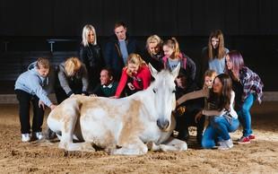 Novo doživetje s čudovitimi lipicanci - postanite šepetalec konjem!