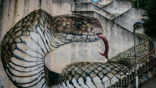 Razlaga sanj: Kača je po Freudu falični simbol, po Jungu znamenje preobrazbe! (foto: profimedia)