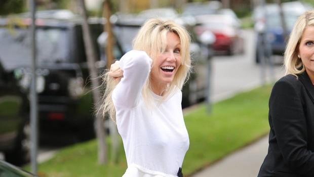 Heather Locklear sodišče odredilo 30-dnevno zdravljenje v psihiatrični bolnišnici (foto: Profimedia)
