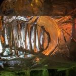 Ledena dežela je odprla svoja vrata na Kongresnem trgu (foto: Ledena dežela Press)
