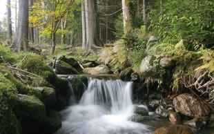 Razlaga sanj: Voda je povezana s čustvi in podzavestjo!