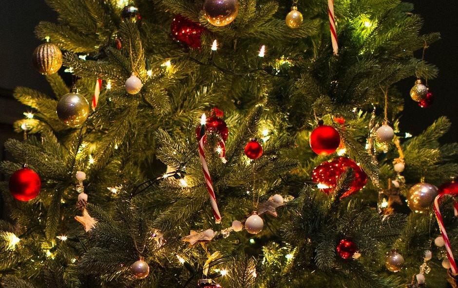 Znane Slovenke o praznikih in okraševanju (foto: Profimedia)
