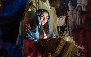 Božični čas zaznamujejo najrazličnejše jaslice