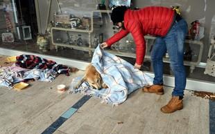 Turški zobozdravnik v mrzlem Istanbulu zavija potepuške pse in mačke v odeje
