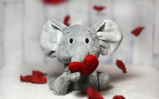 Ljubezen je spontana … še posebej pri nakupovanju za valentinovo!