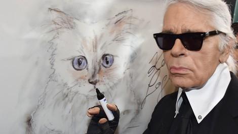 Lagerfeldovo premoženje bi lahko podedovala njegova mačka