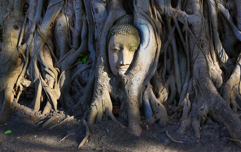 Adrian P. Kezele (Preboj): »Iluzija je zvesta sama sebi in o sebi ustvarja iluzijo!« (foto: profimedia)
