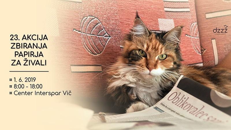 Zbirajmo papir in pomagajmo živalim: V soboto, 1. junija! (foto: DZZZ Press)