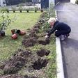 Ko zorijo jagode pri Romani Tomc