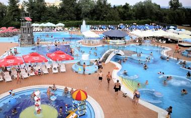 Osvežitev na Mestni plaži Ljubljana kot nalašč za pasje vroče dneve!